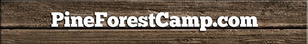 PineForestCamp.com